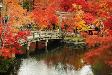 Eikando Temple, Kyoto, Japan